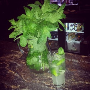 Fresh Mojitos (seasonal)